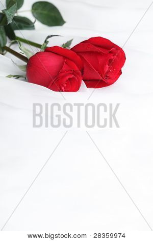 Red rose flower on soft satin,Romantic traditions.