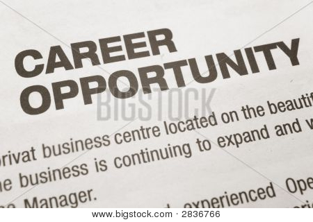 Oportunidades de carrera