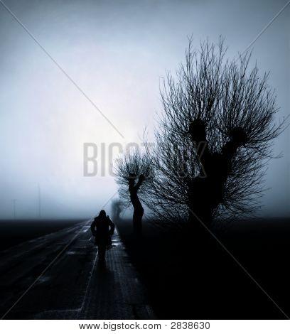 Caminando hacia la niebla azul