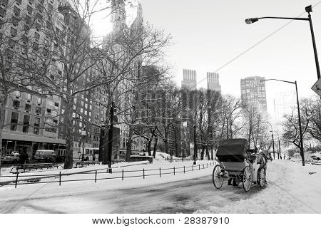 Winter Snow in Central Park, Manhattan, New York City