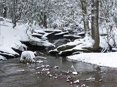 picture of smoky mountain  - Snowy river in the Great Smoky Mountains National Park - JPG