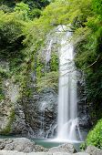 foto of minos  - Water fall at the Mino Quasi National Park in Japan with green maple tree - JPG
