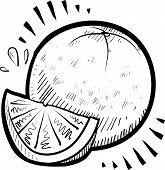 stock photo of tangelo  - Doodle style fresh - JPG