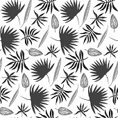 Contrast Black And White Seamless Pattern With Hand Drawn Inky Tropical Leaves. Monochrome Chinese I poster