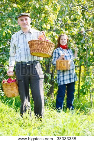 happy couple in the garden harvests