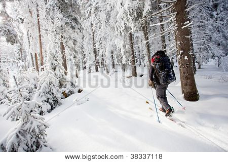 Hiker Skiing In Winter In Mountains
