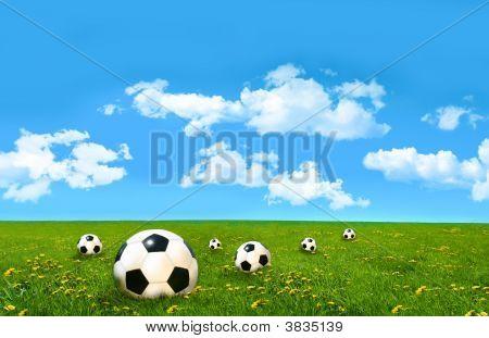 Fußbälle in einem Feld von hohem Gras