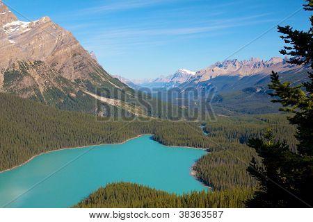 Peyto Lake closeup