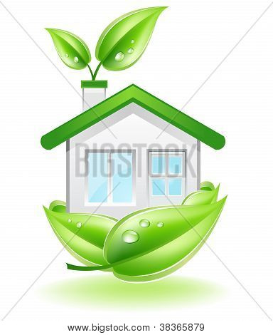 Eco House Nest