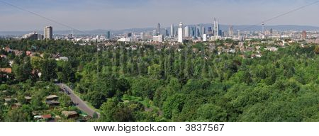 Frankfurt Skyline And Forest