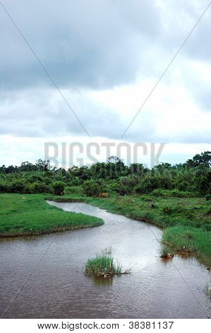 A View Landscape Of The River At Afternoon With Dark Cloud