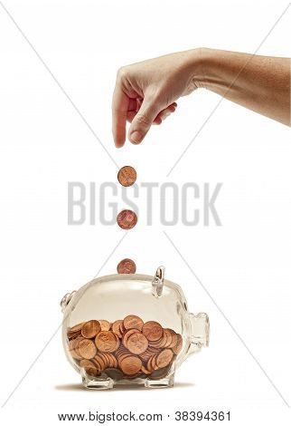 Hand Feeding Piggy Bank