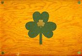 picture of irish moss  - happy st - JPG
