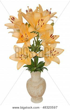Asian Lily Flowers, Lat. Asiatic Hybrids, In A Ceramic Vase, Isolated On White Background