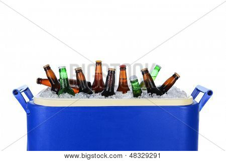 Closeup of an ice chest full of ice and assorted beer bottles. Horizontal format on white.