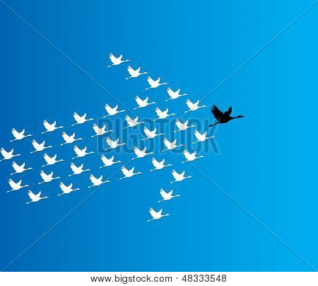 Leadership And Synergy Concept Illustration : A Number Of Swans Flying Against A Deep Blue Sky Backg