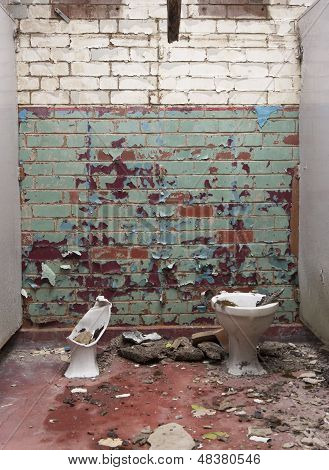 wrecked toilets