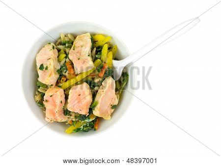 Small Salmon And Vegetable Meal In Bowl