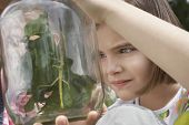 stock photo of stick-bugs  - Two girls examining stick insects in jar outdoors - JPG