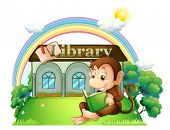 pic of storybook  - Illustration of a monkey reading a book outside the library on a white background - JPG