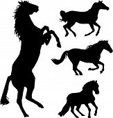 image of wild horse running  - Set of vector black horse silhouette collection - JPG