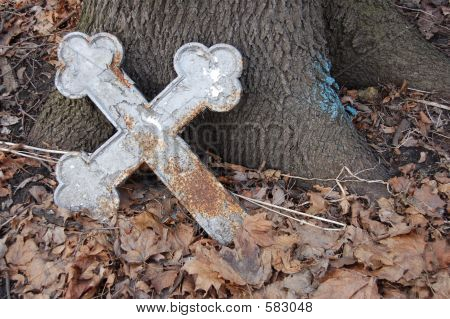 Forgotten Cross