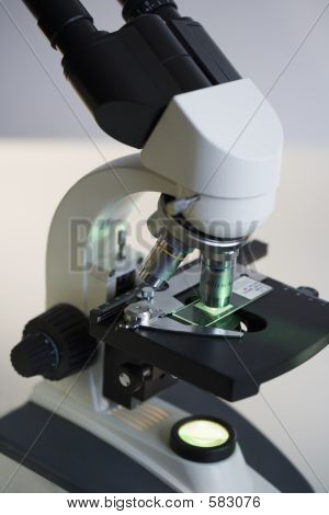 Binocluar Research Microscope