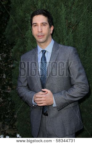 David Schwimmer at the Rape Treatment Center Fundraiser hosted by Viola Davis and honoring Norman Lear, Greenacres, Neberly Hills, CA 10-14-12