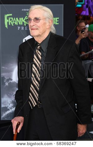 Martin Landau at the