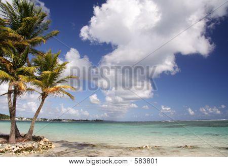 Karibik-Strand