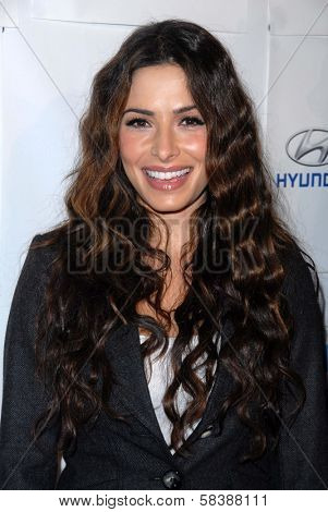 Sarah Shahi at the Blue Tie Blue Jean Ball, presented by Austism Speaks, Beverly Hilton, Beverly Hills, CA 11-29-12