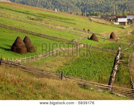 Rural Landscape. Tapered Haystacks On Green Grass Ground