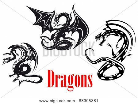 Black danger dragons