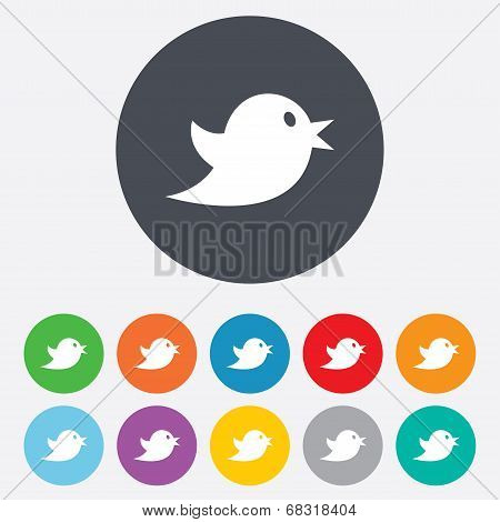 Social media icon. Short messages twitter symbol.