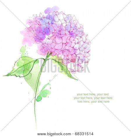 Painted watercolor card with hydrangea flower and place for text