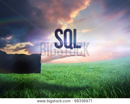 Businesswomans hand presenting the word sql against green field under orange sky