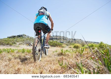 Fit cyclist riding in the countryside uphill on a sunny day