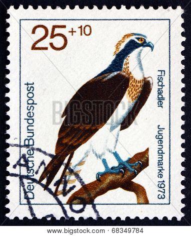 Postage Stamp Germany 1973 Osprey, Bird Of Prey