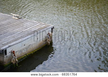Weathered Wooden Jetty In Calm Water