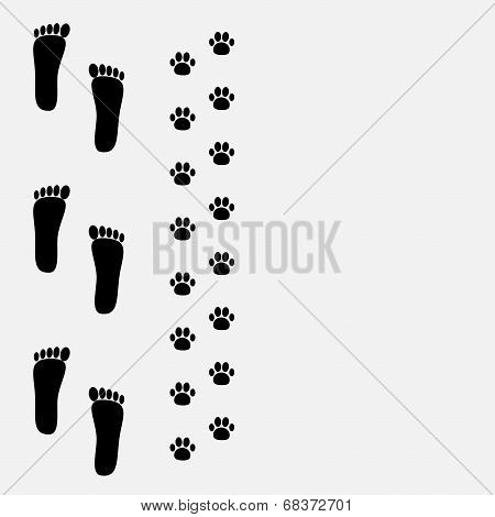 Bare foot print and paw print on the left.