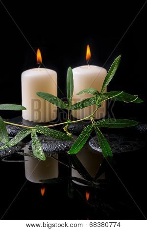 Beautiful Spa Setting Of Green Tendril Passionflower, Candles And Zen Stones With Drops On Reflectio