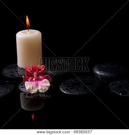 Beautiful Spa Concept Of White And Red Orchid (cambria), Candle On Zen Stones With Drops, Reflection