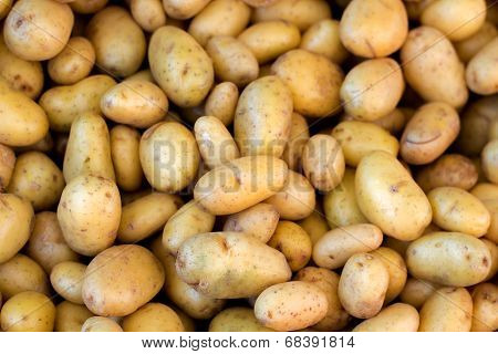 Young Potatoes On A Market