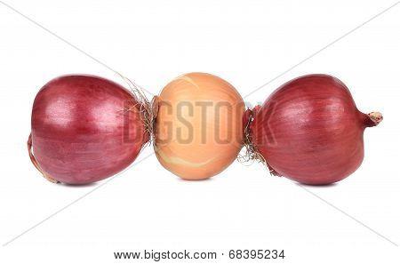 Three ripe onions.
