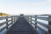 image of orca  - Horizontal photo of Orcas Island harbor wooden walkway within the San Juan Islands during summer evening - JPG