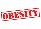 image of morbid  - OBESITY red Rubber Stamp over a white background - JPG