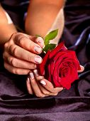 stock photo of funeral  - Female hand with red rose flower in black dress - JPG