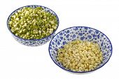 picture of bean sprouts  - Bowls of Mung Bean  - JPG
