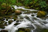stock photo of smoky mountain  - A fast - JPG