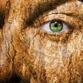 image of smut  - Conceptual image of a face with a bark brown skin - JPG